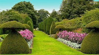 Gambar cover The Most Beautiful Gardens in the World
