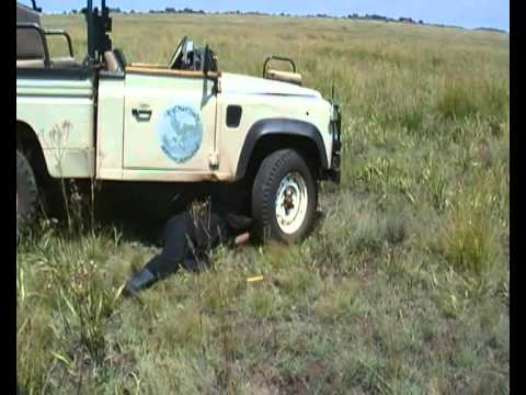 landrover repair south africa