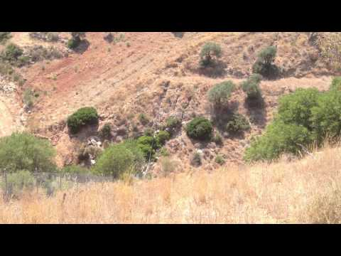 Permaculture Malaga 3: Goats and olives