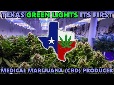 Texas Green Lights its First Medical Marijuana (CBD) Producer