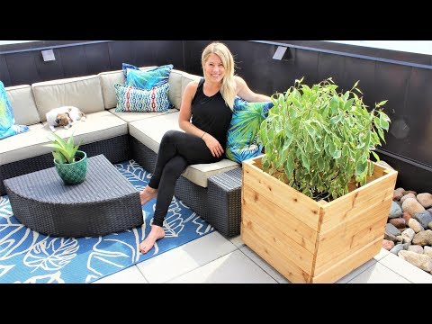 the-modern-cedar-planter-box---easy-diy-video