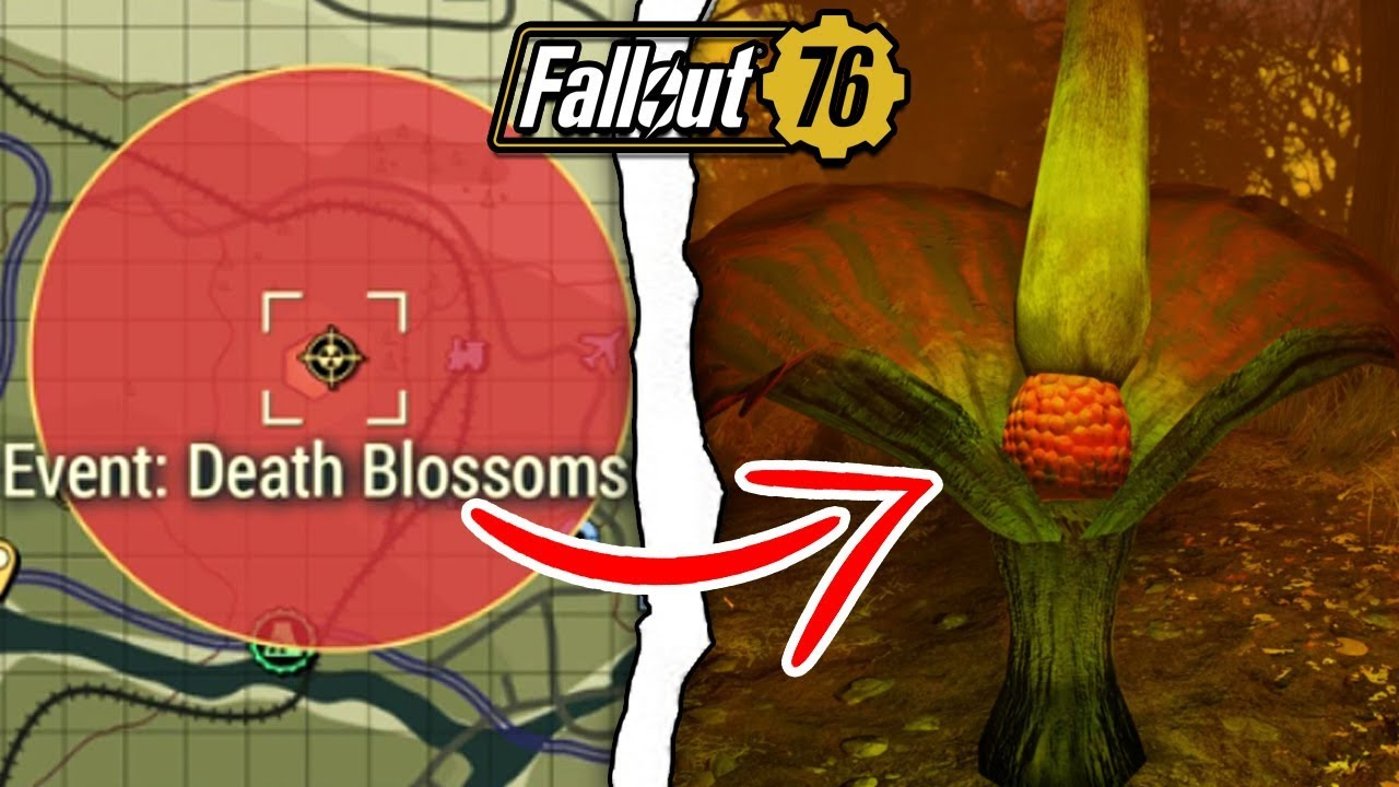 Fallout 76 What Happens If You Nuke The Death Blossoms Fallout 76 Secrets Youtube