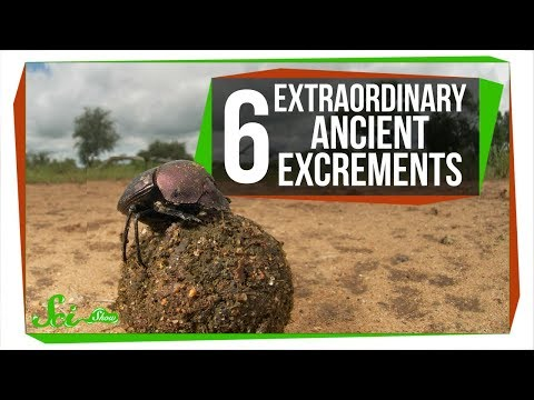 6 Extraordinary Ancient Excrements