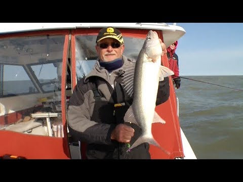 17 Lake Erie Preview-