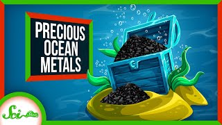 How the Ocean Floor Got Filled with Riches