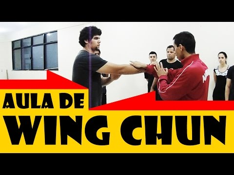 video aulas de wing chun