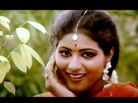 Chinna Chinna Poove - Vaidehi Kalyanam Tamil Song