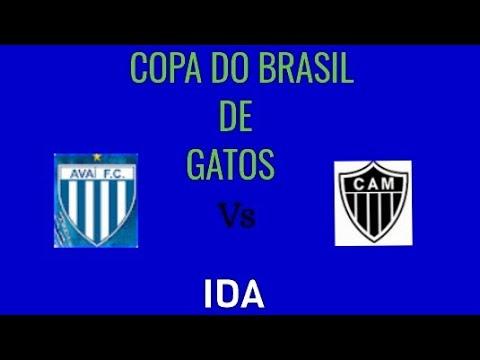 AVAÍ VS ATLÉTICO MG (COPA DO BRASIL DE GATOS 2020) /IDA
