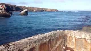 Fort Bragg jetty - Noyo Harbor rockwall fishing 360 view