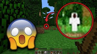 Entity 303 is trying to delete my Minecraft World! (Scary Minecraft Video)