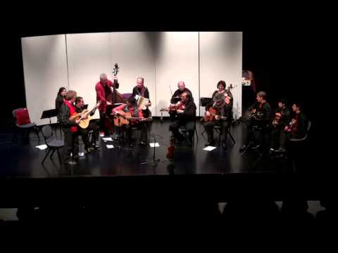 West Auckland Gypsy Strings