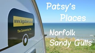 Norfolk, Sandy Gulls - Patsy's Places