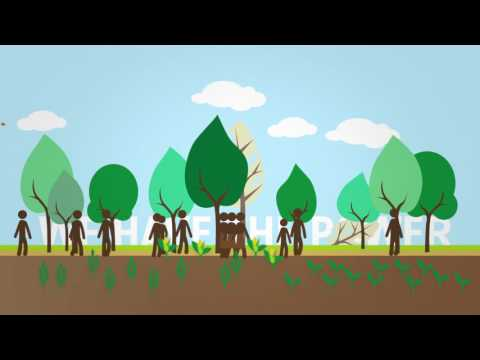 Restoring Degraded Land To Benefit People and Planet