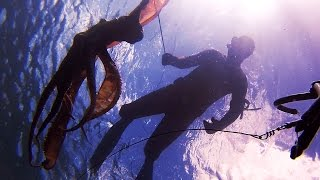 Spearfishing - 8Kg+ Octopus Mornington Peninsula