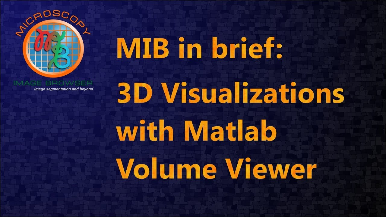 MIB in brief: 3D Visualizations with Matlab Volume Viewer