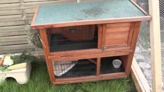 Neues Gehege für unsere Kaninchen   Freigehege (Außenhaltung)