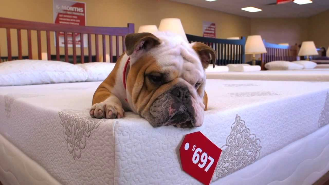 az furniture size pictures design large ga discounters of terrificure terrific mattress dallas and