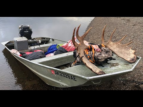 Moose Hunting 2021