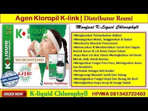 WA 081343722403 Does Liquid Chlorophyll Contain Vitamin K
