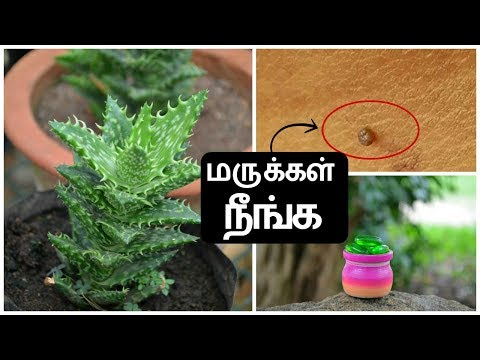 மருக்கள் அடியோடு  நீங்க 5 வீட்டு வைத்தியங்கள் | Marugu Treatment In Tamil