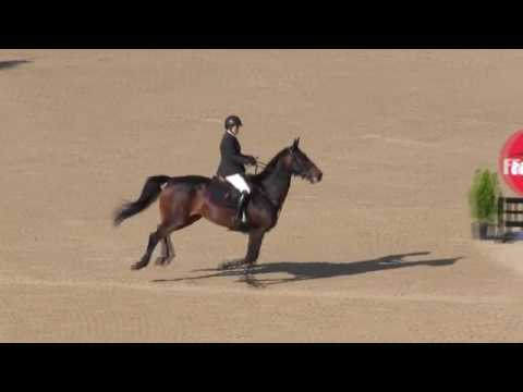 Video of LAST ORDERS HX ridden by REBECCA COHEN from ShowNet!