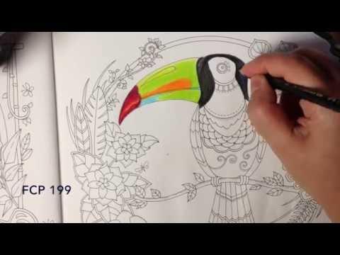 Magical Jungle - Toucan - coloring