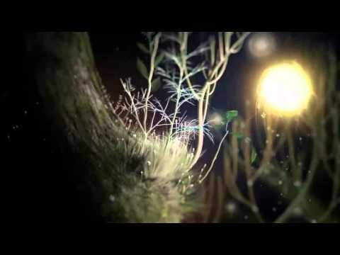 Саженцы и луковицы цветов - Почтой ||| Могилев, Беларусь - YouTube