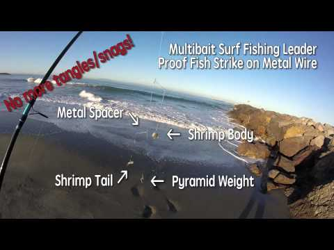 Surf Perch Fishing -- Proof Metal Line Leader Works After Nearly Hooking Surfer