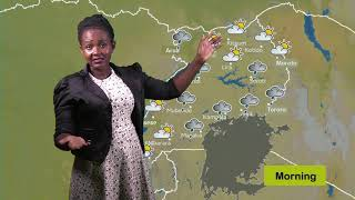Weather forecast for 29 05 2019 by Daphine K Nsamba
