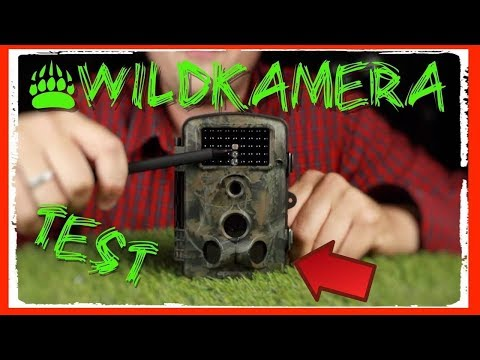 ❌WILDKAMERA APEMAN TEST / REVIEW DEUTSCH  ( TESTSIEGER )
