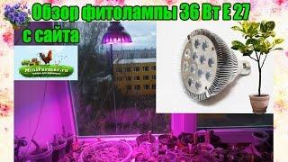Обзор фитолампы 36 Вт Е27(биколор)  для растений от Минифермер ру. Как работает эта лампа?(, 2017-04-11T07:07:19.000Z)