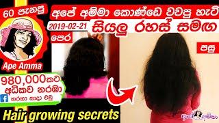 ✔ අපේ අම්මා කොණ්ඩෙ වවපු හැටි All hair growing secretes by Apé Amma