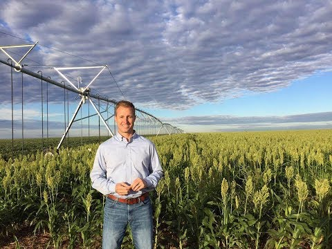 From Policy to Producer: Jeremy Brown's Return to the Farm