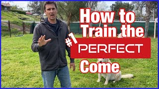 Training your dog to come every time