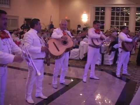 Mariachi Band Surprise at a Wedding