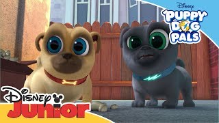 Puppy Dog Pals    Magical Moment: Bob's Favourite Baseball   Official Disney Channel Africa