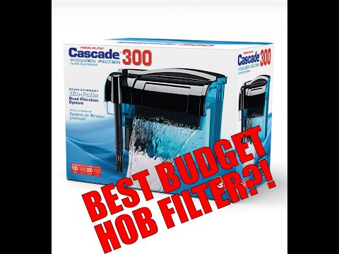 Penn Plax Cascade 300! Great Budget Aquarium Filter!!