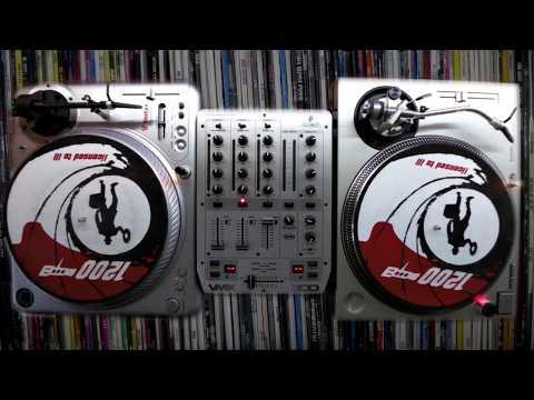 D.S.V. - Funk & Disco Party - VinylMixSet#2 (100-105 BPM)