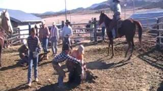Double Cone Ranch Cowboys Bringing cows home and Branding cattle.