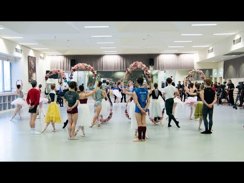 World Ballet Day 2017 Highlights from The Australian Ballet