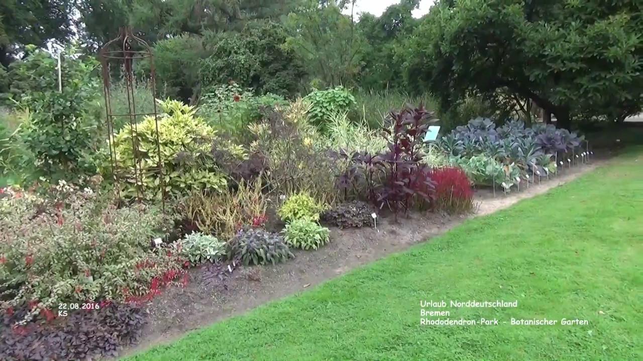 garten bremen, botanischer garten - rhododendronpark - bremen - youtube, Design ideen
