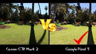 Google Pixel 3 vs Canon G7X Mark ll: Camera Video/Photo Comparison (Daylight & Low Light)