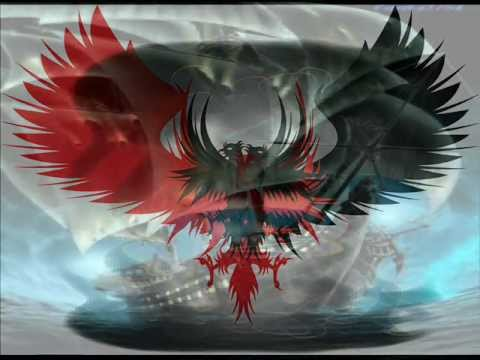 albania eagle muvie art galeri 2012.wmv