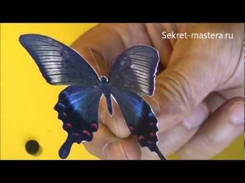 видео: Как сделать 3d бабочки из бумаги своими руками