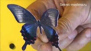 как сделать 3D бабочки из бумаги своими руками