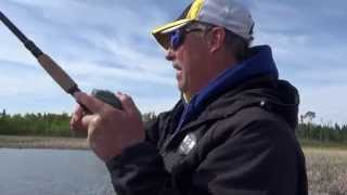 Sight Fishing for Lake Nipigon Pike