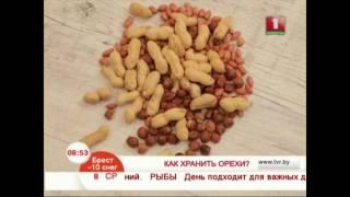 Как правильно хранить орехи?