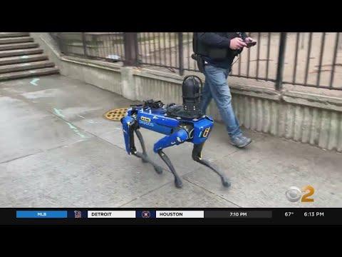 Polisen i New York slutar använda roboten Spot Boston Dynamics robothund ansågs vara för dystopisk