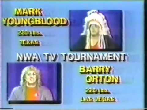 NWA Television Title Tournament 1984