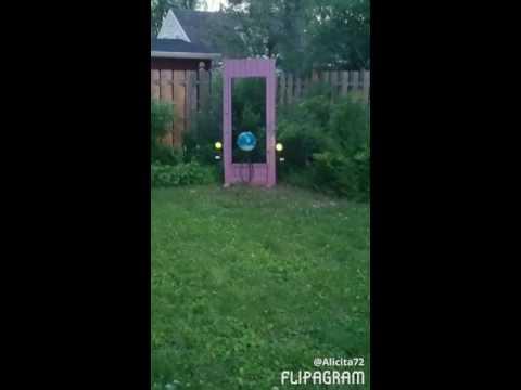 My Garden My Wonderland Welcome!